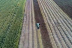 La máquina segador cosecha una cosecha en un campo al lado de un campo verde con maíz ucrania Silueta del hombre de negocios Cowe Foto de archivo
