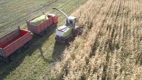 La máquina segador de forraje aérea llena el camión de la masa cortada del maíz metrajes