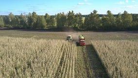 La máquina segador de forraje automotora carga maíz en el vehículo almacen de metraje de vídeo