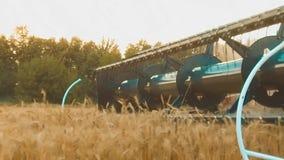 La máquina segador quita el campo del vídeo de la cámara lenta de la agricultura del pan del trigo cosecha de la forma de vida de almacen de metraje de vídeo