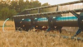 La máquina segador quita el campo del vídeo de la cámara lenta de la agricultura del pan del trigo cosecha de la hierba del grano almacen de video