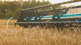 La máquina segador quita el campo del vídeo de la cámara lenta de la agricultura del pan del trigo cosecha de la hierba del grano metrajes