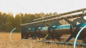 La máquina segador quita el campo del vídeo de la cámara lenta de la agricultura del pan del trigo hierba del grano del trigo del almacen de metraje de vídeo