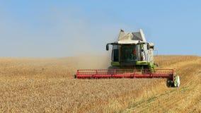La máquina segador recolecta el trigo Imagen de archivo