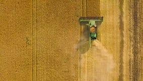 La máquina segadora de la visión superior recolecta el trigo en la puesta del sol Cosecha del campo de grano, estación de la cose