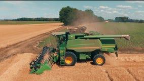 La máquina segadora de la visión aérea recolecta el trigo en campo de trigo amarillo Cosecha del campo de grano, estación de la c almacen de video