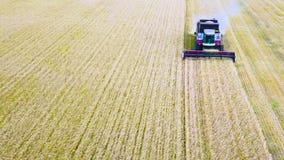 La máquina segadora de la visión aérea recolecta el trigo en la puesta del sol Cosecha del campo de grano, estación de la cosecha almacen de video