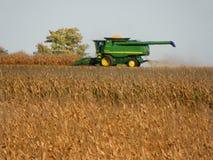 La máquina segadora que saca maíz acecha en campo Imagenes de archivo