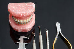 La mâchoire ou les dents humaine modèlent avec des bagues dentaires et des outils photos stock