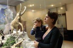 La mère dit son fils au sujet des moutons de montagne Photographie stock libre de droits