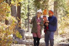 La mère enceinte et la famille asiatiques trimardant dans la forêt, se ferment  Photographie stock
