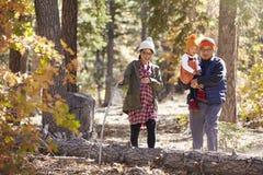 La mère enceinte, le père et la jeune fille trimardent dans une forêt Images stock
