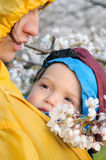 La mère et l'enfant dans l'élingue parmi sakura fleurit image stock