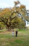 La mère et la fille marchant dans le chêne se garent Photo stock