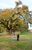 La mère et la fille marchant dans le chêne se garent Images libres de droits