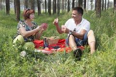 La mère et le fils ont eu un pique-nique dans les bois Photos libres de droits