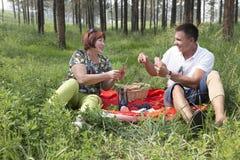 La mère et le fils ont eu un pique-nique dans les bois Images libres de droits