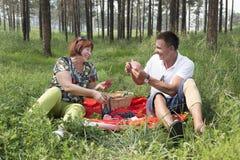 La mère et le fils ont eu un pique-nique dans les bois Image stock