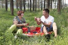 La mère et le fils ont eu un pique-nique dans les bois Photographie stock libre de droits