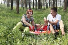 La mère et le fils ont eu un pique-nique dans les bois Image libre de droits