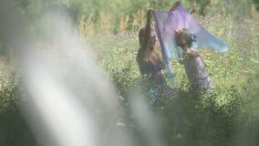 La mère et sa petite fille rassemble les fleurs au pré clips vidéos