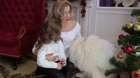 La mère, l'enfant et le chien jouent près de l'arbre de Noël clips vidéos