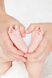 La mère remet des pieds de chéri de fixation. Image stock