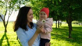 La mère tient l'enfant sur des mains et joue avec le pissenlit L'enfant rit dans des mains de maman en parc au coucher du soleil Photographie stock