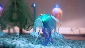 La méduse de robot nage dans l'aquarium banque de vidéos