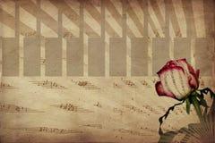 La música y se levantó Foto de archivo libre de regalías