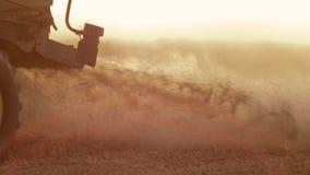 La m?quina segadora recolecta la cosecha del trigo almacen de video