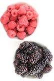 La mûre fraîche et la framboise rouge porte des fruits dans de petites cuvettes blanches Photo stock