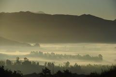 La mañana brumosa en Escondido CA tiene gusto de pintar imagen de archivo