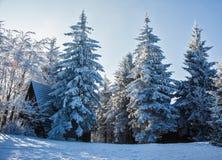La mañana del Año Nuevo en el Tatras checo Imagenes de archivo