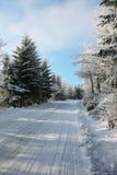 La mañana del Año Nuevo en las maderas Foto de archivo libre de regalías