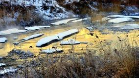 La mañana del invierno imagen de archivo