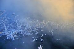 La mañana del invierno imagenes de archivo