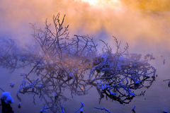 La mañana del invierno fotografía de archivo