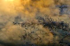 La mañana del invierno fotos de archivo