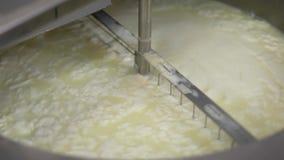 La macchina automatica di latteria sta producendo il formaggio, coltello girevole sta mescolando la massa di bianco dopo il latte archivi video
