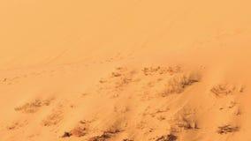 La macchina fotografica del primo piano si muove dal piede verso la cresta della duna di sabbia video d archivio