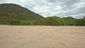 La macchina fotografica si muove vicino alla spiaggia di sabbia verso le piante al piede della collina stock footage
