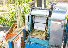 La macchina per produce un succo zuccherato fresco con la canna da zucchero premere il rolle Immagine Stock Libera da Diritti