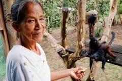 La Macedonia, Amazzonia/Colombia - 15 marzo 2016: l'animale domestico d'alimentazione di ticuna della tribù di signora locale del immagine stock libera da diritti