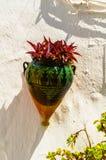 La maceta de cerámica con las flores colgó en la pared, adornamiento Foto de archivo libre de regalías
