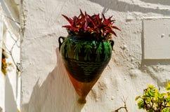 La maceta de cerámica con las flores colgó en la pared, adornamiento Fotos de archivo