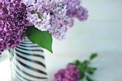 La macro de la lila florece la flor grande Fotos de archivo