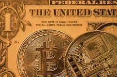 La macro vista di un paio di Bitcoin conia la mostra del dettaglio di superficie dell'invenzione fotografia stock libera da diritti