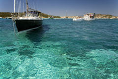 La Maddalena, Sardinia. Water transparency of the marine park of La Maddalena Royalty Free Stock Images