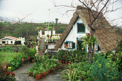 La Madera Fotografia Stock